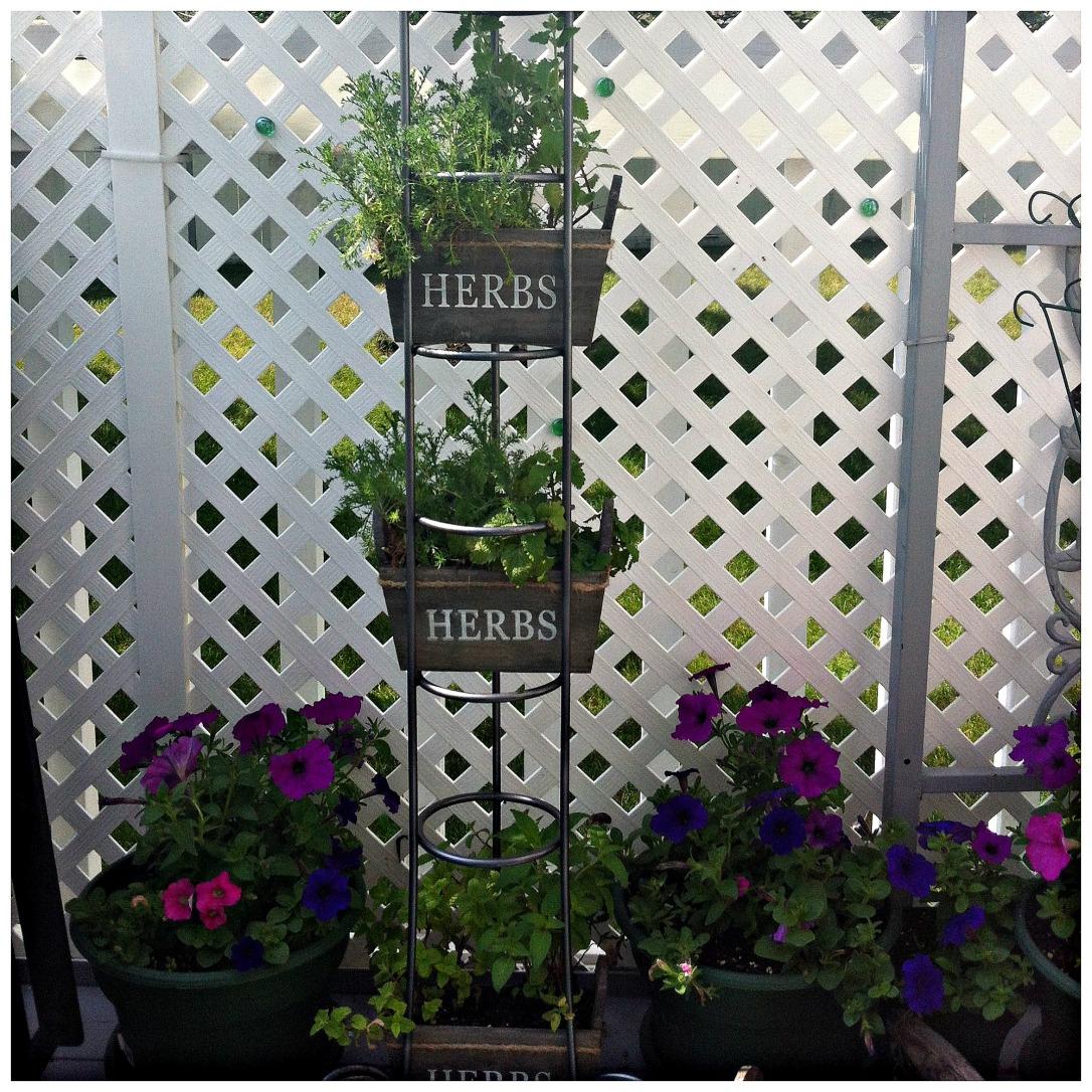 CD Rack Herb Garden 8 DIY Patio Accents #trashtotreasure #patio #diy #yard #garden #up-cycle #re-purpose #patio_table #plant_stand #bird_bath #herb_garden