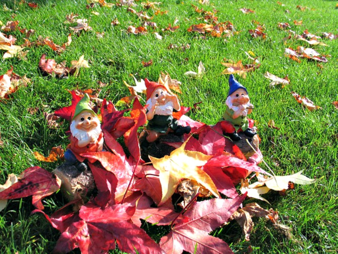 Fall Knome Decorations