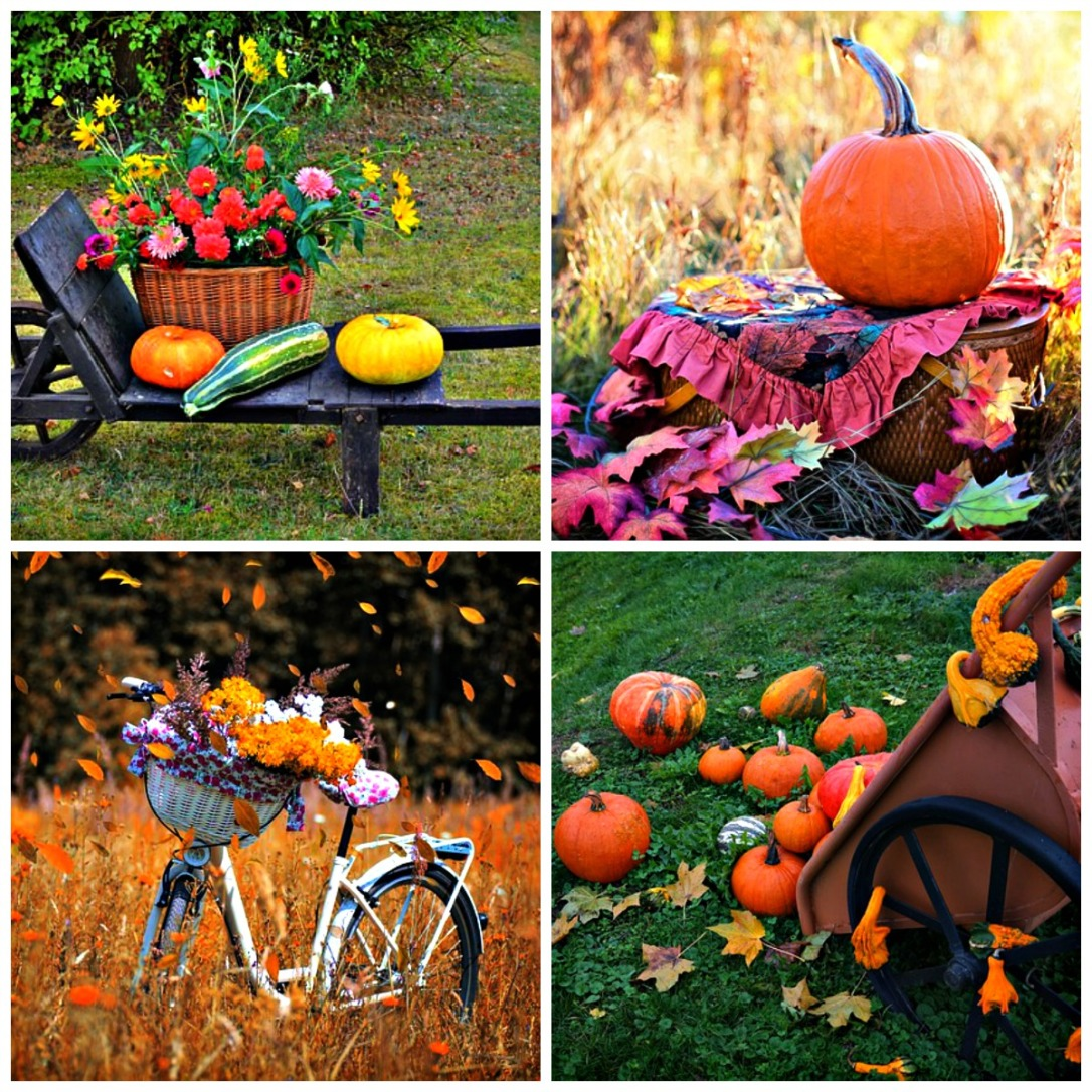 DIY outdoor fall decorating inspirations