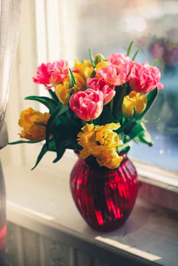 What Your Fresh Cut Flowers Want You to Know. #freshcutflowers #flowerarrangement #boutique #vase #nutrients #carefor