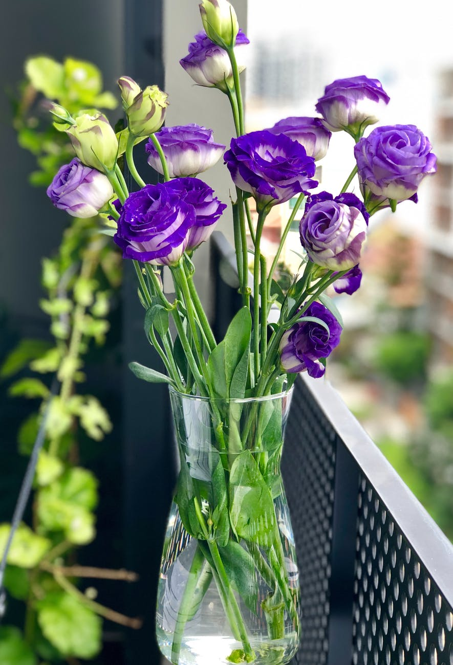 What Your Fresh Cut Flowers Want You to Know. Tips & Care of Fresh Cut Flowers #flowerarrangement#freshflowers #flowerarrangement #florist #tips #entertaining #centerpieces #weddings #vase