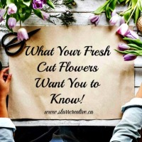 What Your Fresh-Cut Flowers Want You To Know!