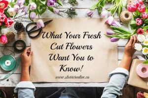 What Your Flowers Want You to Know