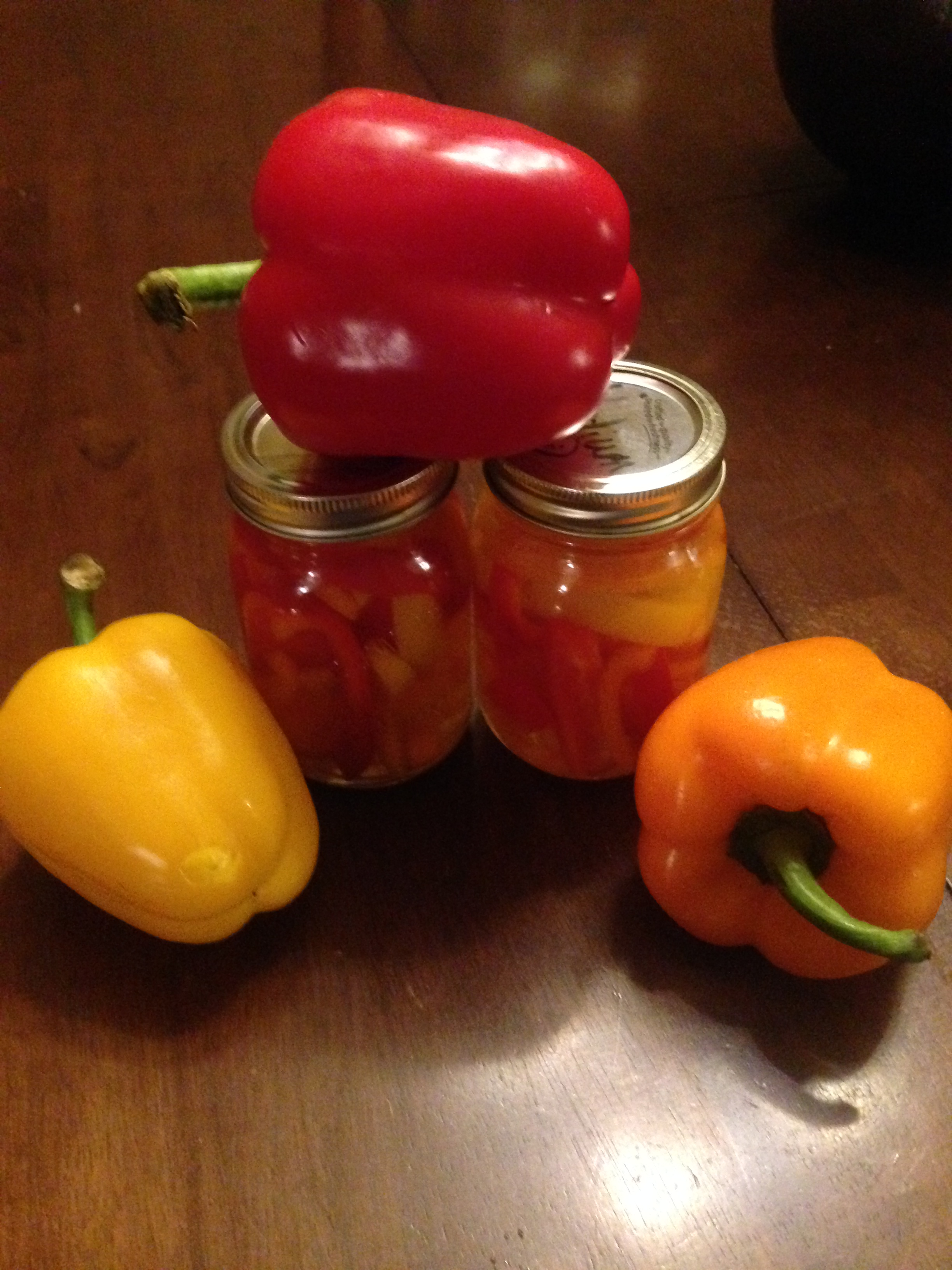 Quick Easy Pickled Bell Peppers #pickled #bellpepers #easy #recipe #red #orange #yellow