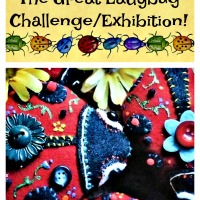 The Great Ladybug Challenge/Exhibition!